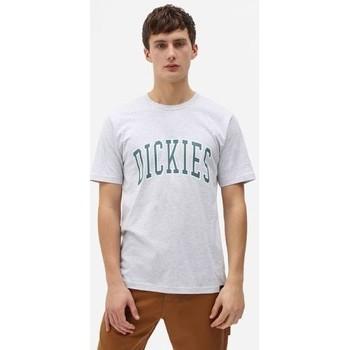 Textil Muži Trička s krátkým rukávem Dickies T-shirt  Aitkin gris chiné/vert