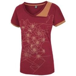 Textil Ženy Trička s krátkým rukávem Salewa 251661651 Višňové