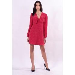 Textil Ženy Krátké šaty Guess W1GK1JWDEK0 Bezbarvý