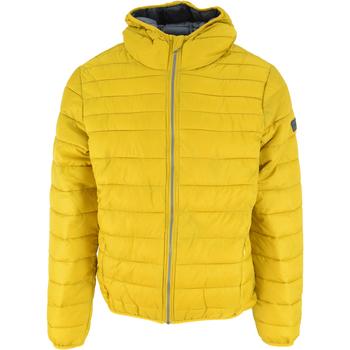 Textil Muži Prošívané bundy Lotto Bomber Cortina Hd Lg Pad Pl Žlutá