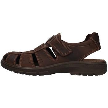 Boty Muži Sandály Enval 7219111 Hnědá