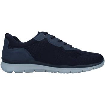 Boty Muži Nízké tenisky Enval 7218211 Modrá