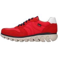 Boty Muži Nízké tenisky CallagHan 12903 Červená