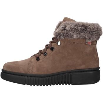 Boty Ženy Kotníkové boty Stonefly 212221 Béžová