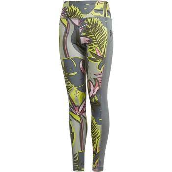 Textil Dívčí Legíny adidas Originals GM8382 Zelený
