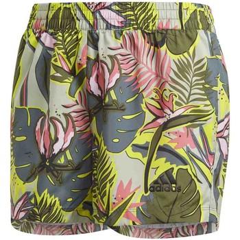 Textil Děti Plavky / Kraťasy adidas Originals GM8393 Zelený