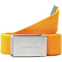 Textilní doplňky Pásky Dickies DK0A4XBYB591 Žlutá