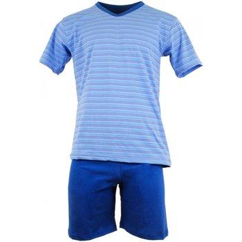 Textil Muži Pyžamo / Noční košile Cornette Pánské pyžamo 330/16