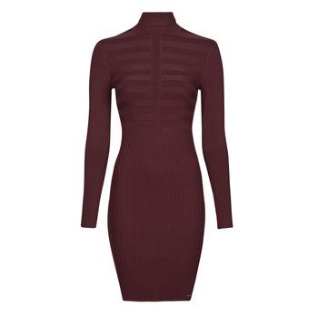 Textil Ženy Krátké šaty Morgan RMENTO Bordó