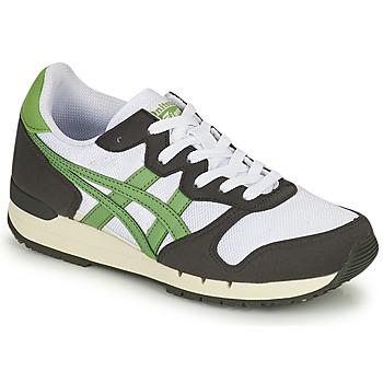 Boty Nízké tenisky Onitsuka Tiger ALVARADO Zelená / Černá / Bílá