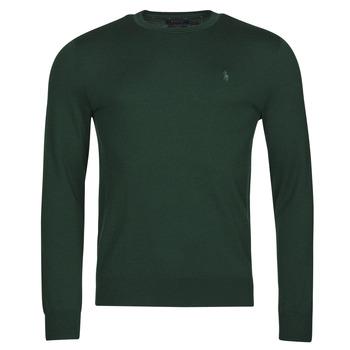 Textil Muži Svetry Polo Ralph Lauren AMIRAL Zelená