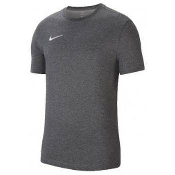 Textil Muži Trička s krátkým rukávem Nike Dri-Fit Park 20 Tee šedá