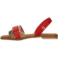 Boty Ženy Sandály Gattinoni PEGAF6171WH Červená