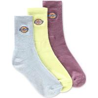 Spodní prádlo Ponožky Dickies DK0A4X82B541 Zelený