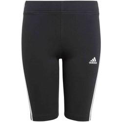 Textil Dívčí Legíny adidas Originals GN4090 Černá