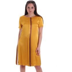 Textil Ženy Krátké šaty Café Noir JA6260 Žlutá