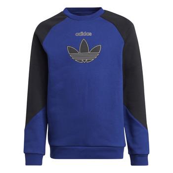 Textil Děti Mikiny adidas Originals ROUGED Tmavě modrá / Černá