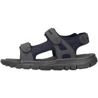 Boty Muži Sandály Skechers 51874 Modrá