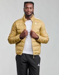 Textil Muži Prošívané bundy adidas Performance ESS DOWN JACKET Béžová