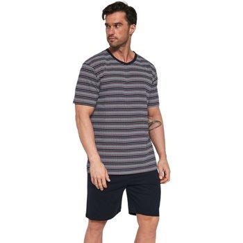 Textil Muži Pyžamo / Noční košile Cornette Pánské pyžamo 338/22