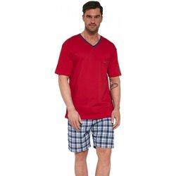 Textil Muži Pyžamo / Noční košile Cornette Pánské pyžamo 329/114