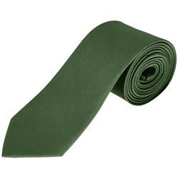 Textil Kravaty a doplňky Sols GARNER Verde Botella Verde