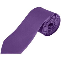 Textil Kravaty a doplňky Sols GARNER Morado Oscuro Violeta