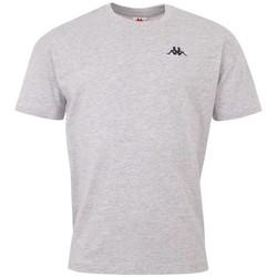 Textil Muži Trička s krátkým rukávem Kappa Veer T-Shirt Šedá