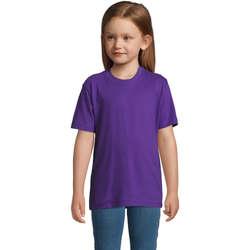 Textil Děti Trička s krátkým rukávem Sols Camista infantil color Morado Violeta