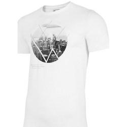 Textil Muži Trička s krátkým rukávem 4F TSM023 Bílé