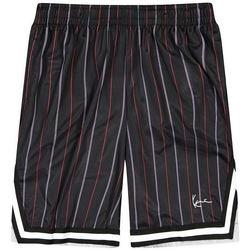 Textil Muži Kraťasy / Bermudy Karl Kani Short  Small Signature Pinstripe Mesh noir/bleu/rouge