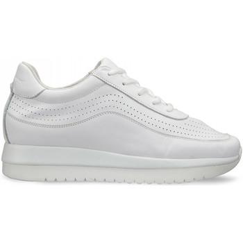 Boty Ženy Nízké tenisky Docksteps DSW951000 Bílý
