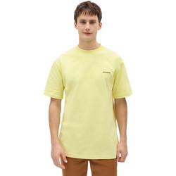 Textil Muži Trička s krátkým rukávem Dickies DK0A4X9OB541 Žlutá