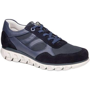 Boty Muži Nízké tenisky CallagHan 12919 Modrý