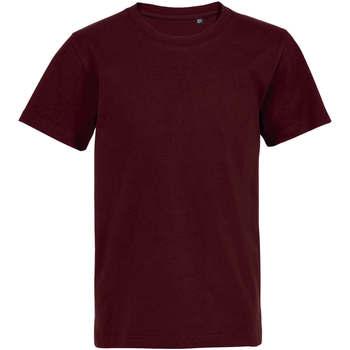 Textil Děti Trička s krátkým rukávem Sols Camiseta de niño con cuello redondo Burdeo
