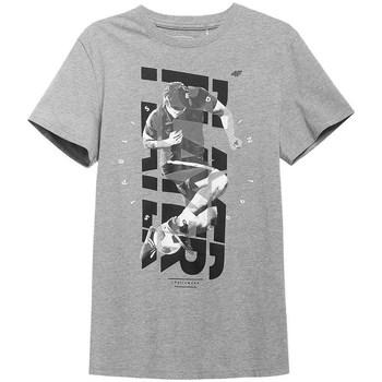 Textil Muži Trička s krátkým rukávem 4F TSM011 Šedé