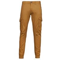 Textil Muži Cargo trousers  Jack & Jones JJIPAUL Velbloudí hnědá