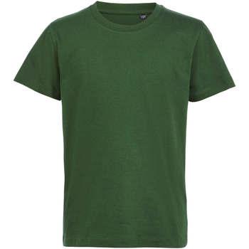 Textil Děti Trička s krátkým rukávem Sols CAMISETA DE MANGA CORTA Verde