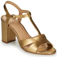 Boty Ženy Sandály Cosmo Paris ZOUM Zlatá