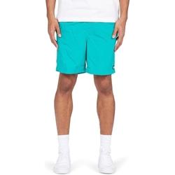 Textil Muži Kraťasy / Bermudy DC Shoes Late Daze 18 Zelená