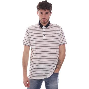 Textil Muži Polo s krátkými rukávy Navigare NV70034 Bílý