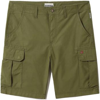 Textil Muži Kraťasy / Bermudy Napapijri NP0A4F9U Zelený