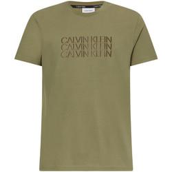 Textil Muži Trička s krátkým rukávem Calvin Klein Jeans K10K107158 Zelený