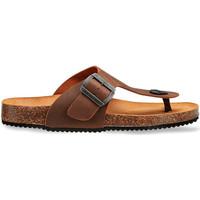 Boty Muži Sandály Docksteps DSM228401 Hnědý