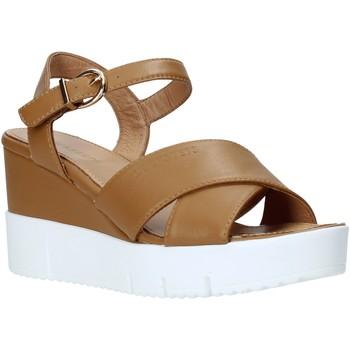 Boty Ženy Sandály Docksteps DSW952001 Hnědý