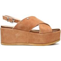 Boty Ženy Sandály Alberto Guardiani AGW003001 Hnědý