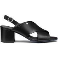 Boty Ženy Sandály Alberto Guardiani AGW003405 Černá