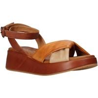 Boty Ženy Sandály Sshady L2401 Hnědý