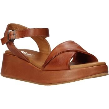 Boty Ženy Sandály Sshady L2402 Hnědý