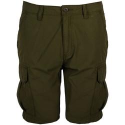 Textil Muži Kraťasy / Bermudy Napapijri  Zelená